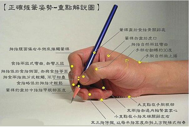 正确的握笔姿势图片